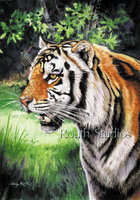"""Tiger Portrait II"""