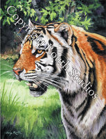 """The Tiger"" Note Cards"
