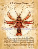 """Vitruvian Crawfish"" Note Cards"