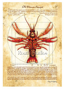 """Vitruvian Crawfish"""