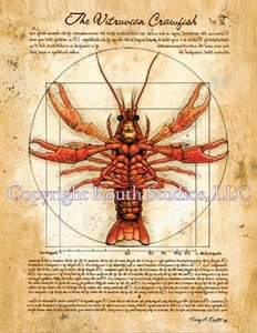 Vitruvian Crawfish